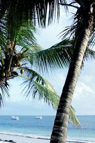 Badeurlaub in Kenia am Indischen Ozean