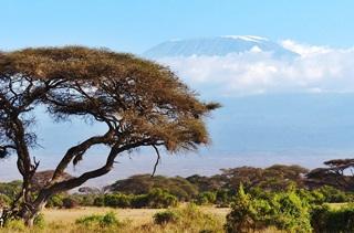 Reiseführer Kenia mit Kilimandscharo