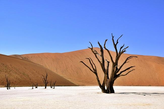 Reiseziel südliches Afrika - Reiseführer Namibia