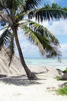 Reiseliteratur Seychellen
